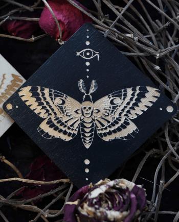 Lepidoptera coaster
